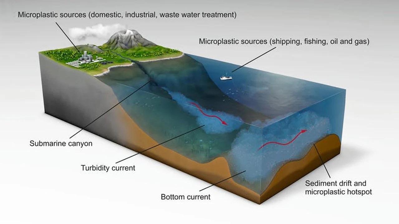 Denizde Görülmüş En Büyük Mikroplastik Yığını Keşfedildi