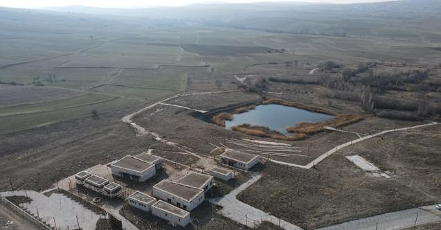 Kuraklık 3 bin yıllık Hitit Barajı'nı da vurdu!