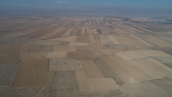 Konya Ovası'nda kuraklık tehdidi: Yeraltı suyu 45 metreye düştü
