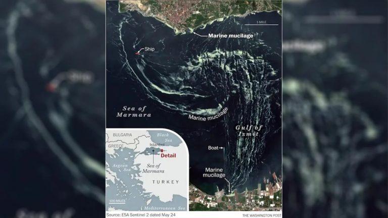İzmit Körfezi'ne Dönen Deniz Salyası Uzaydan Görüntülendi